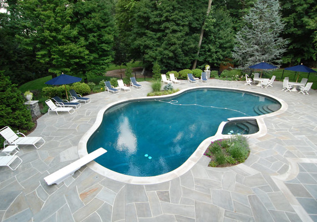 pool and patio designs | pool design and pool ideas